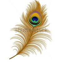 Peacock Feather Template